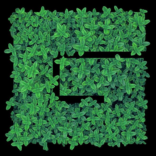 Grünraumplaner Logo